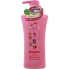 Шампунь Ichikami (объём, здоровый блеск и укрепление волос)