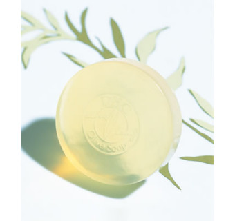 Оливковое Мыло DHC для упругости и эластичности кожи