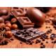 Шоколадная диета – миф или реальность?